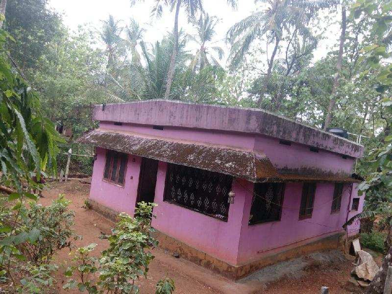 3 BHK Individual House for Sale in Palakkad - 11.5 Cent