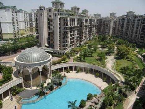 3 BHK 1500 Sq.ft. Residential Apartment for Rent in Sector 93a Noida