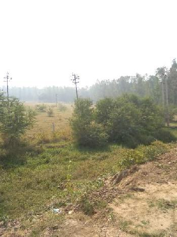 38 Acre Warehouse for Sale in NH 1, Rajpura