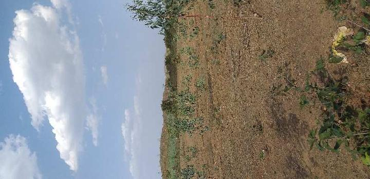 50 Acre Farm Land for Sale in Umaria Road, Jabalpur
