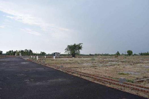 10 Bigha Farm Land for Sale in Malihabad, Lucknow