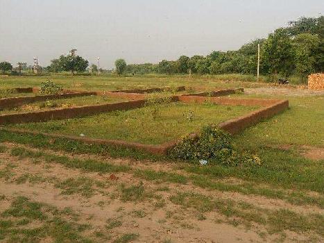 1 Bigha Farm Land for Sale in Faizabad Road, Lucknow
