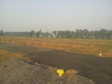 8 Bigha Farm Land for Sale in Faizabad Road, Lucknow