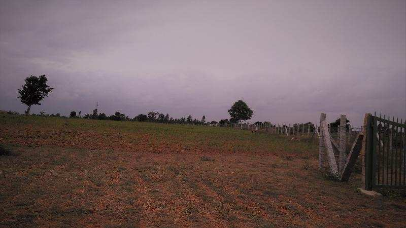 Agricultural/Farm Land for Sale in Bagalore Road, Hosur - 10 Acre