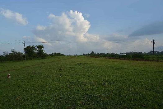 28 Acre Farm Land for Sale in Dindori, Nashik