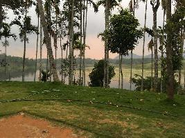 2 Acre Industrial Land for Sale in Ambalavayal, Wayanad