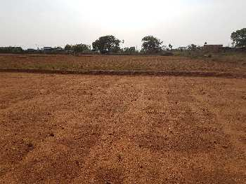 385 Sq. Yards Residential Plot for Sale in Sector 2 Faridabad
