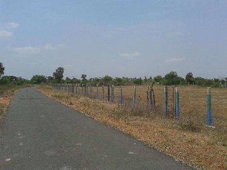 1800 Sq.ft. Residential Plot for Sale in Polur, Tiruvannamalai