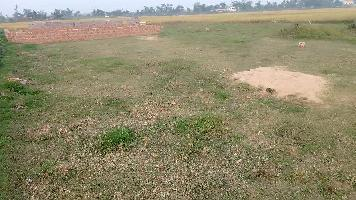 1500 Sq.ft. Residential Plot for Sale in Pratap Nagari, Cuttack