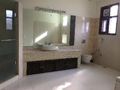 4 BHK 3500 Sq.ft. House & Villa for Rent in Sector 11 Chandigarh