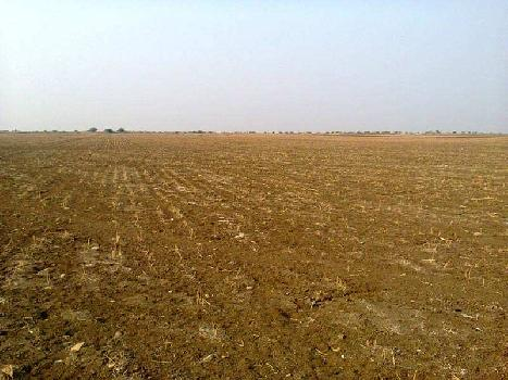 12 Guntha Commercial Land for Sale in Sadashivpeth, Pune