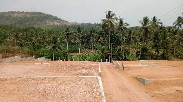 58 Acre Farm Land for Sale in Nelamangala, Bangalore