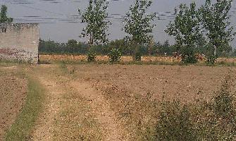 1000 Sq.ft. Residential Plot for Rent in Karad, Satara