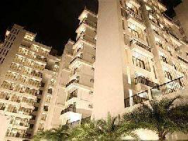 3 BHK Flat for Sale in Sector 28, Nerul, Navi Mumbai