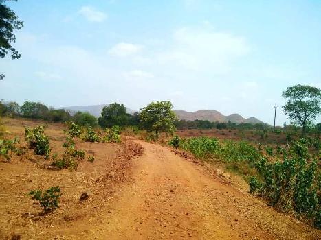 5 Acre Farm Land for Sale in Karjat, Navi Mumbai