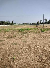 14.5 Acre Residential Plot for Sale in Manor, Palghar