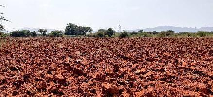 10 Acre Farm Land for Sale in Hiriyur, Chitradurga