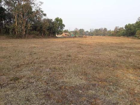 87 Guntha Farm Land for Sale in Kudal, Sindhudurg