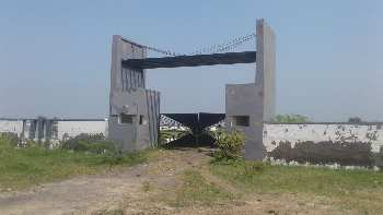 199045 Sq. Yards Farm Land for Sale in Olpad, Surat