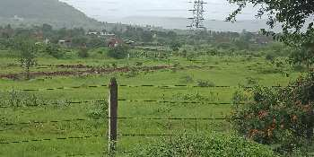 11000 Sq.ft. Farm Land for Sale in Chandkhed, Pune