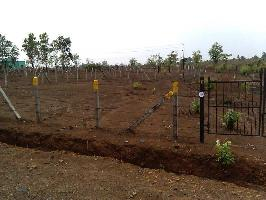 6040 Sq.ft. Residential Plot for Sale in Murbad