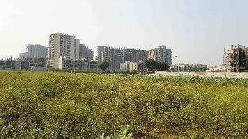 2.5 Acre Commercial Land for Sale in Sector 89, Faridabad