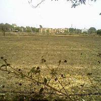 3 Acre Farm Land for Sale in Pardi, Vapi