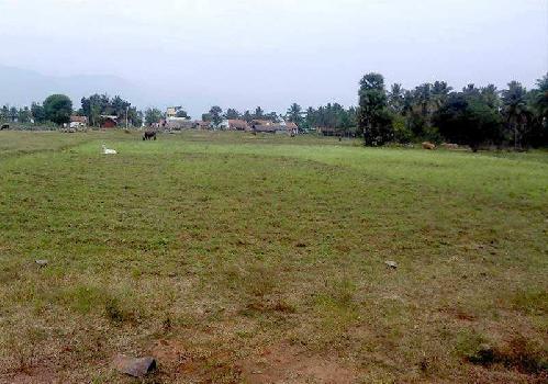 48000 Sq.ft. Residential Plot for Sale in Talasari, Palghar