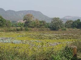 18 Acre Farm Land for Sale in Khed, Solapur