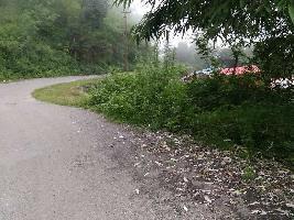 3 Bigha Farm Land for Sale in Bhimtal, Nainital