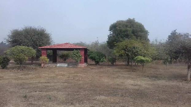 9600 Sq. Yards Residential Plot for Sale in Badshahpur, Gurgaon