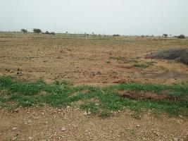 54450 Sq. Yards Farm Land for Sale in Beechwal, Bikaner