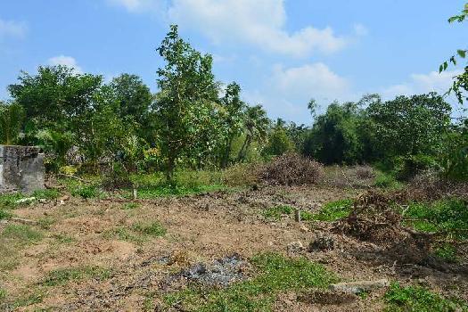 15840 Sq.ft. Farm Land for Sale in Nedungadu, Pondicherry