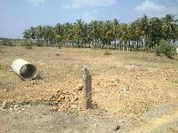 7623 Sq.ft. Commercial Land for Sale in Tumkur Turuvekere