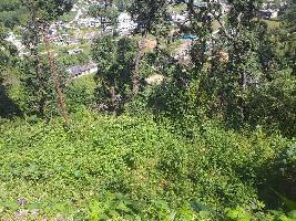 6300 Sq.ft. Residential Plot for Sale in Bhimtal, Nainital