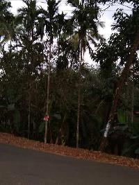 Property for Sale in Kanhangad, Kasaragod | Buy/Sell Properties in