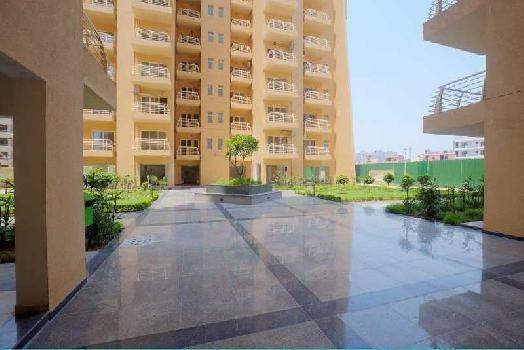 3 BHK 1700 Sq.ft. Residential Apartment for Rent in Sector 20 Panchkula