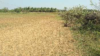 1 Acre Farm Land for Sale in Budalur, Thanjavur