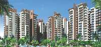 3 BHK Flat for Sale in Sector 77, Noida