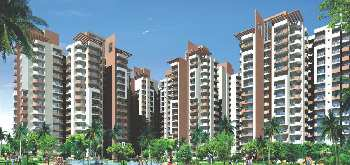 3 BHK 1615 Sq.ft. Residential Apartment for Sale in Sector 77 Noida
