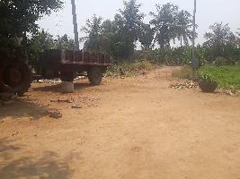 Farm Land for sale in Erode | Buy/Sell Agricultural Farm Land in Erode