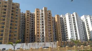 3 BHK 1480 Sq.ft. Residential Apartment for Sale in IIM Road, Lucknow