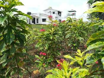 3500 Sq.ft. Farm Land for Sale in Amarvati Road, Nagpur