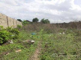 18 Acre Residential Plot for Sale in Adampur, Jalandhar