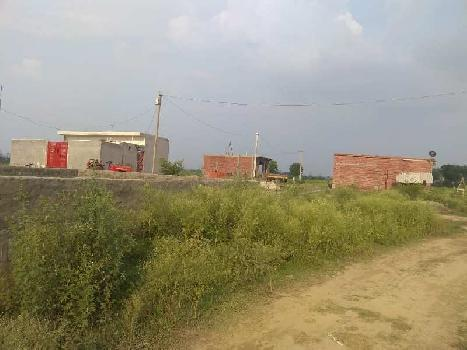 100 Sq. Yards Residential Plot for Sale in Sector 144 Noida