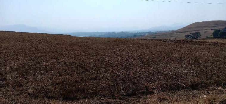 140 Guntha Farm Land for Sale in Igatpuri, Nashik