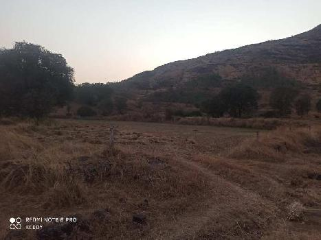 45 Guntha Farm Land for Sale in Igatpuri, Nashik