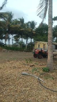 15 Acre Farm Land for Sale in Pandharpur