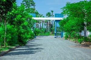 90 Sq. Yards Residential Plot for Sale in Tagarapuvalasa, Visakhapatnam