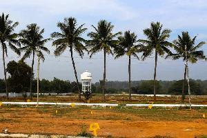Residential Plots for sale in Hoskote, Bangalore | Buy/Sell